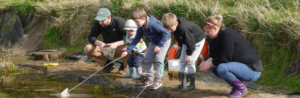 Pond dipping at Family Hour at Holly Hagg Community Farm