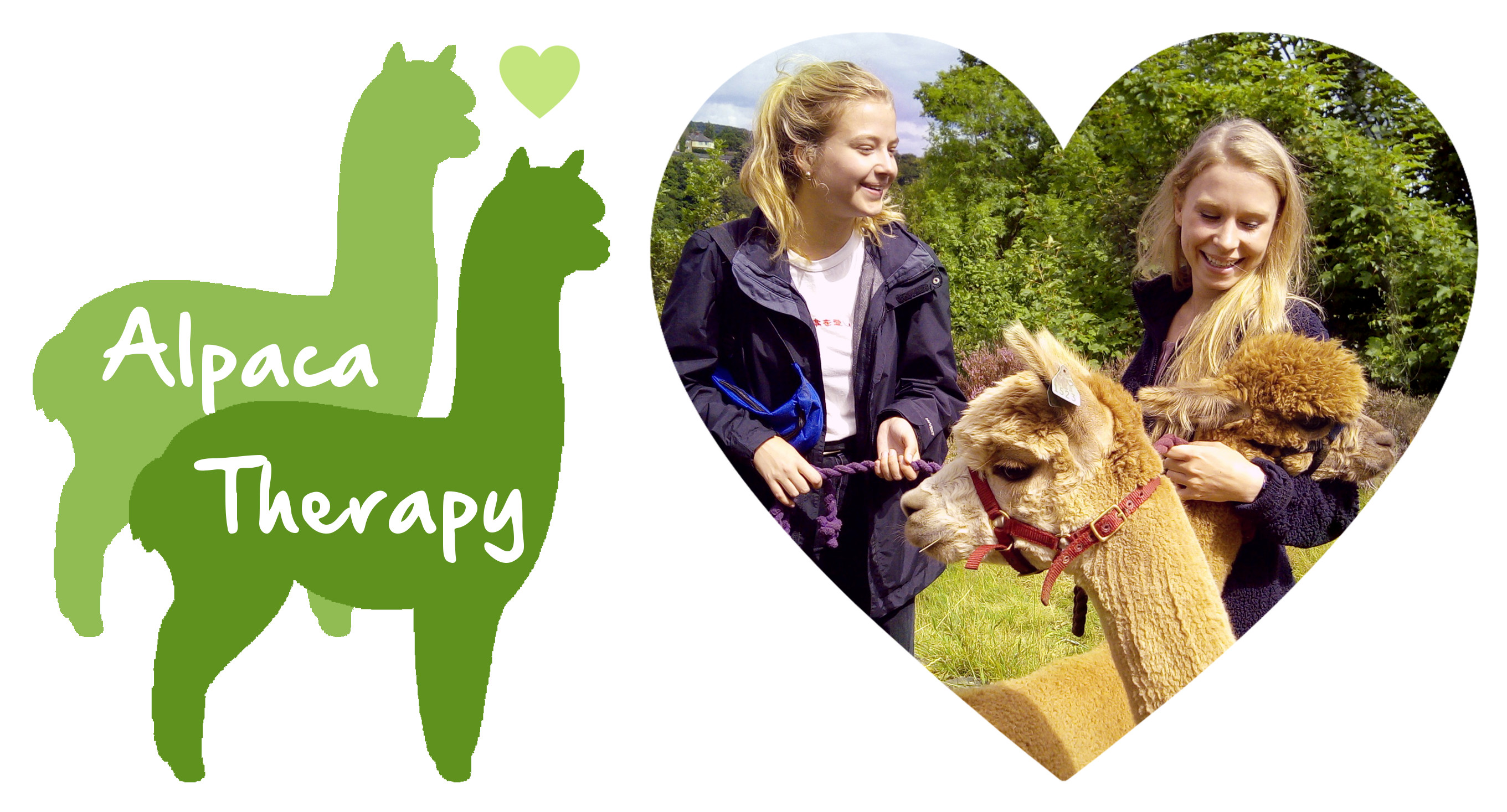 Holly Hagg Alpaca Therapy ad